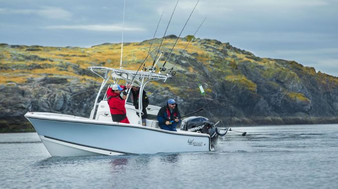 Mako 214 CC, A small and elegant Fishing Solid As A Rock