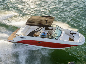 Sea Ray SDX 250 sky view
