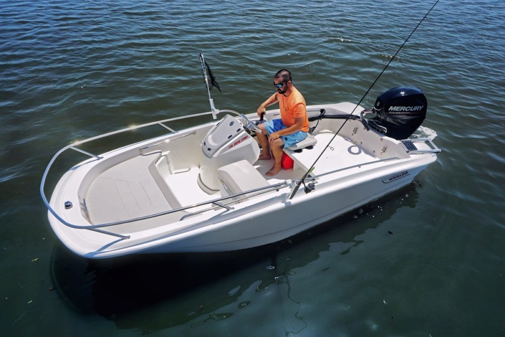 Boston Whaler 130 super Sport - sky view