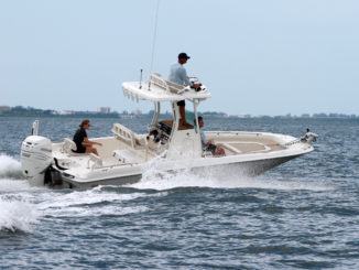 Boston Whaler 240 Dauntless Pro - 1 - yacht and sea